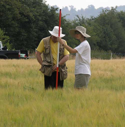Archaeological fieldwork