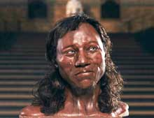 Cheddar man and the genetic history of Britain